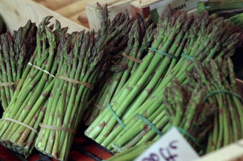 Asparagus from the Luberon